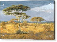 African Landscape Acrylic Print