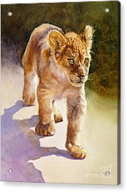 Acrylic Print featuring the painting African Lion Cub by Bonnie Rinier