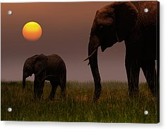 African Mother Elephant And Baby - Acrylic Print by 1001slide