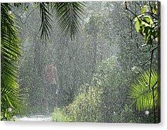 African Rain Acrylic Print