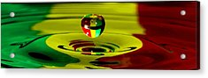 African Splash Acrylic Print by Brendan Quinn