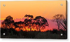 African Sunrise Acrylic Print by Karen E Phillips