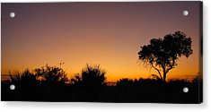 African Sunset Acrylic Print by Karen E Phillips
