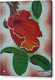 African  Tulip Tree Acrylic Print