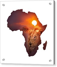 African Wildlife Map Acrylic Print