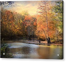 After Daybreak Acrylic Print by Jai Johnson