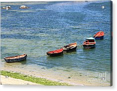 After The Catch Acrylic Print by David Van der Merwe