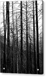 After The Fire Acrylic Print by Joe Kozlowski