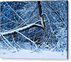 After The Icy Rain - Featured 3 Acrylic Print by Alexander Senin
