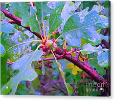 After The Morning Rain Acrylic Print