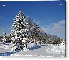 After The Snow 2 Acrylic Print by Graham Taylor