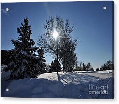After The Snow 3 Acrylic Print by Graham Taylor