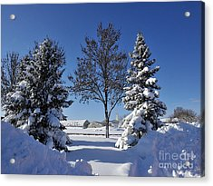 After The Snow Acrylic Print by Graham Taylor