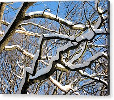 Acrylic Print featuring the digital art After The Snowfall 2 by Dennis Lundell