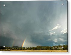 After The  Storm Acrylic Print by Alan Russo