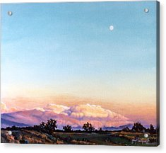 Acrylic Print featuring the painting After The Storm by Craig T Burgwardt