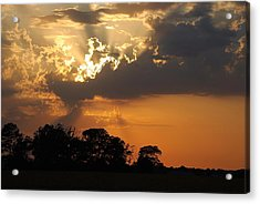 After The Storm Acrylic Print by Francie Davis