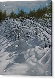 After The Storm Acrylic Print by Jason Sawtelle