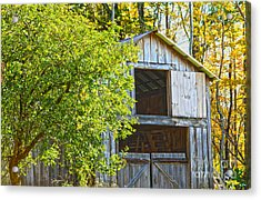 Afternoon Delight Acrylic Print by A New Focus Photography