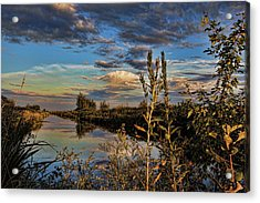 Late Afternoon In The Mead Wildlife Area Acrylic Print