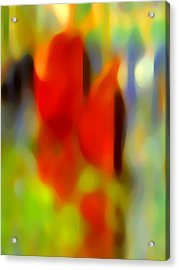 Afternoon In The Park Acrylic Print by Amy Vangsgard