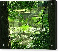 Afternoon Reflections Acrylic Print by Bruce Carpenter