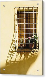 Afternoon Shadow In Montepulciano Acrylic Print by Clint Brewer