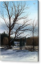 Afternoon Shadows Acrylic Print