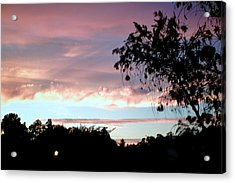 Acrylic Print featuring the photograph Against The Blue Sky by Yolanda Rodriguez