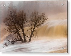 Against The Current Acrylic Print by Mary Amerman