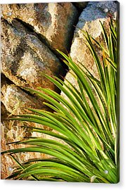 Against The Rocks Acrylic Print by Scott Campbell