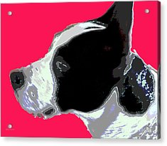 Agatha 1 Acrylic Print by Sally Simon