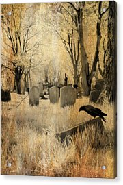 Aged Infrared Acrylic Print by Gothicrow Images