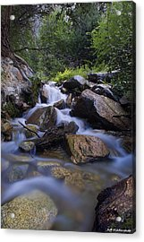 Agnes Vaille Acrylic Print