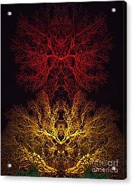 Agni Acrylic Print by Tim Gainey