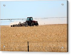Agriculture In Southern Idaho.  Acrylic Print by Rob Huntley