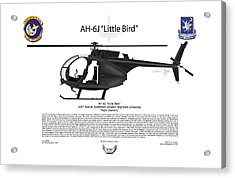 Ah-6j Little Bird Acrylic Print by Arthur Eggers