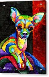 Ah Chihuahua Acrylic Print