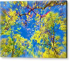 Air Brushed Spring Trees Acrylic Print