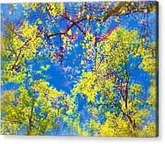 Air Brushed Spring Trees Acrylic Print by Skyler Tipton