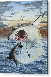 Air Jaws Acrylic Print by Jason Nicholson