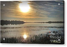 Acrylic Print featuring the photograph Airlie Road Morning by Phil Mancuso