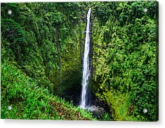 Acrylic Print featuring the photograph Big Island - Akaka Falls by Francesco Emanuele Carucci