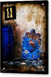 Akrokeramon Acrylic Print by Nicki P