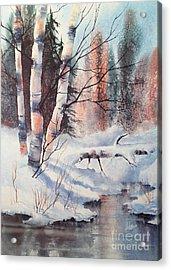 Alaska Birch II Acrylic Print by Teresa Ascone