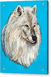 Acrylic Print featuring the painting Alaska White Wolf by Bob and Nadine Johnston