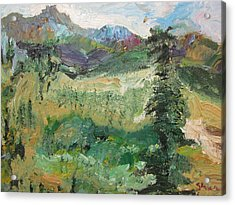 Acrylic Print featuring the painting Alaskan Landscape by Shea Holliman