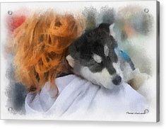 Alaskan Malamute Puppy Photo Art Acrylic Print by Thomas Woolworth