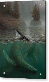 Humpback Whales - Underwater Marine - Coastal Alaska Scenery Acrylic Print by Karen Whitworth