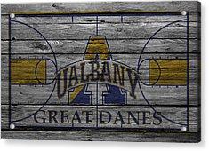 Albany Great Danes Acrylic Print